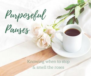 Finding Purporseful Pauses
